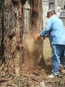 Grateful for my dad - he can handle the big chain saw